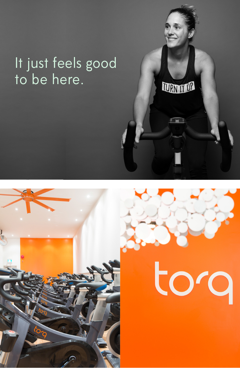 torq-image-1